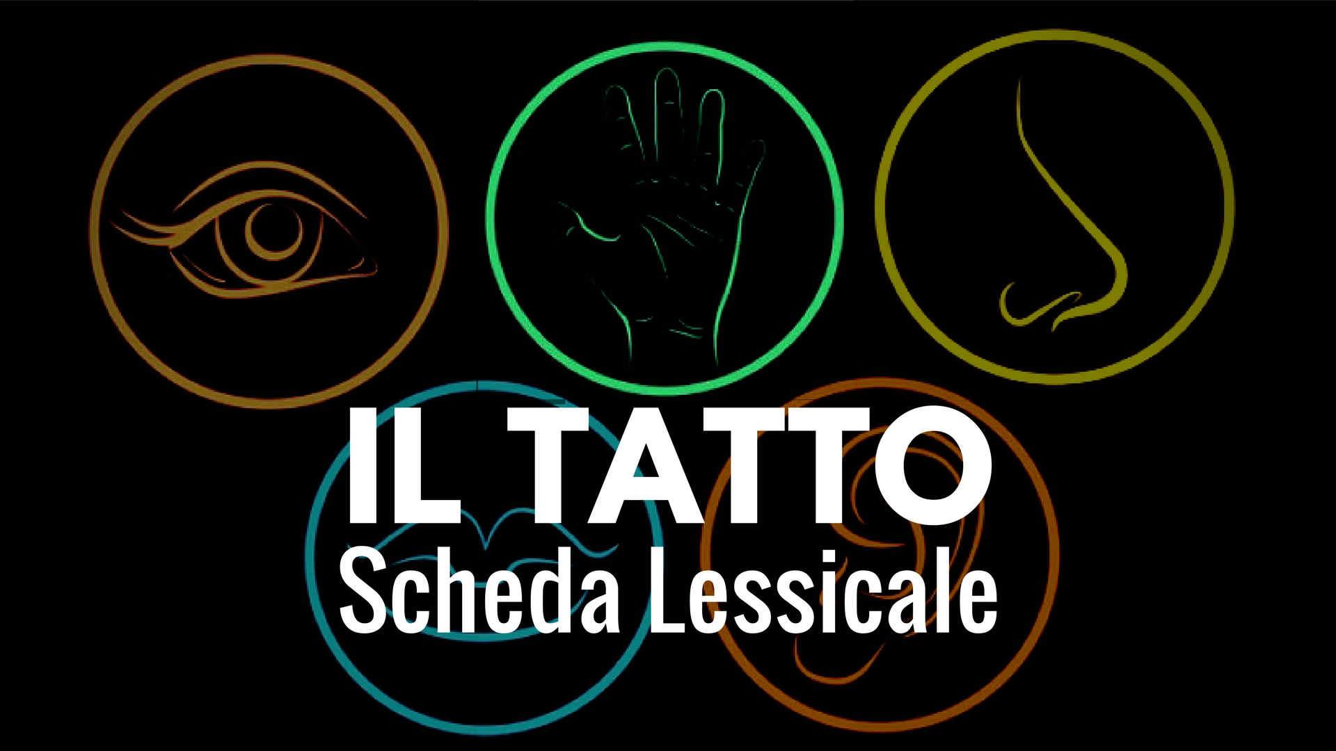 Il Tatto - scheda lessicale